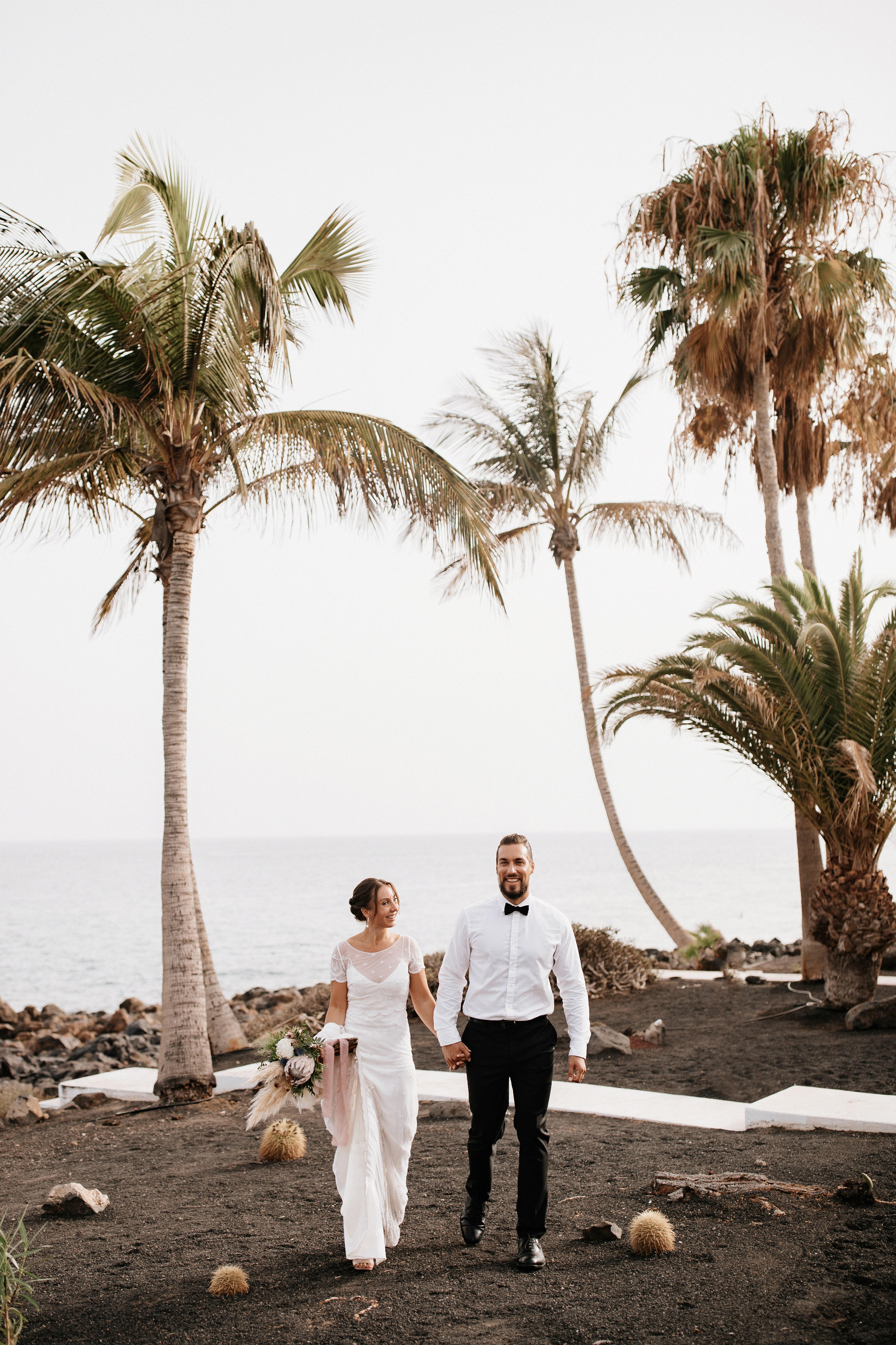 Talasa : Palms&White